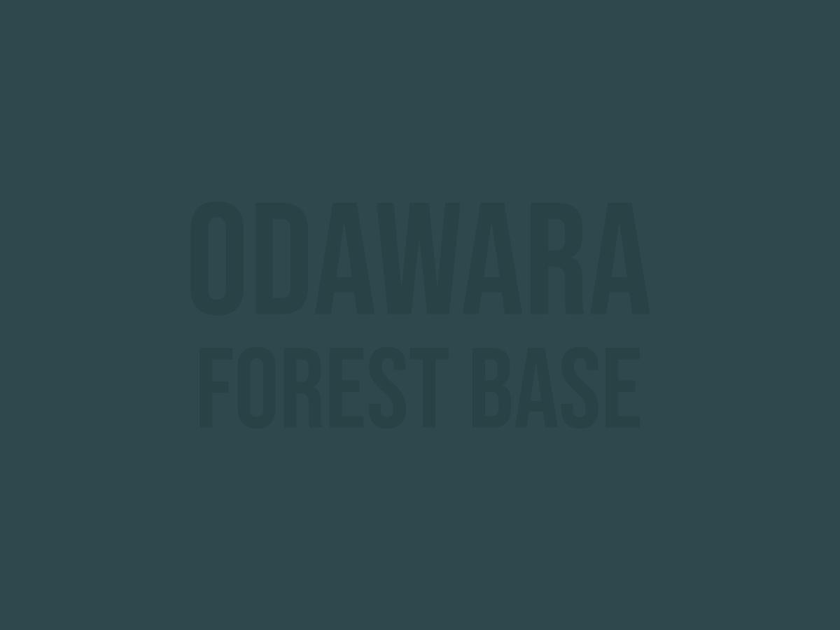 小田原市 いこいの森について